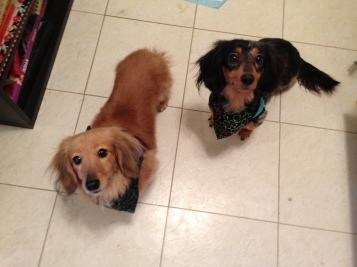 Maude & Stella.