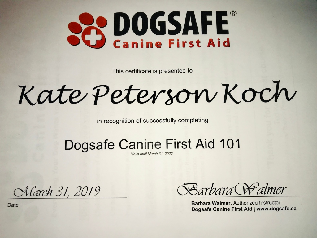 Kate's Dogsafe® Canine First Aid 101 certificate. Obtained on March 31, 2019 and valid through March 31, 2022.